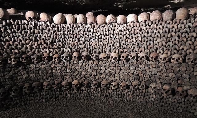 kosti a lebky